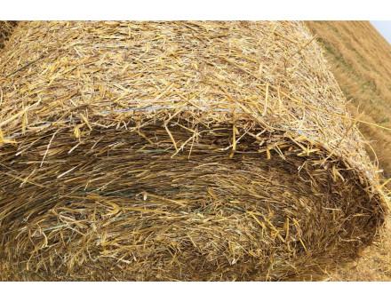 Стог сена в сетке упаковочной Тянь-Жень