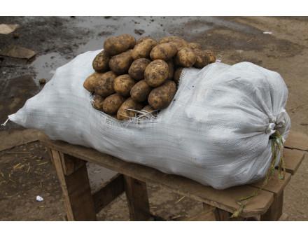 Полипропиленовые мешки Тянь-Жень