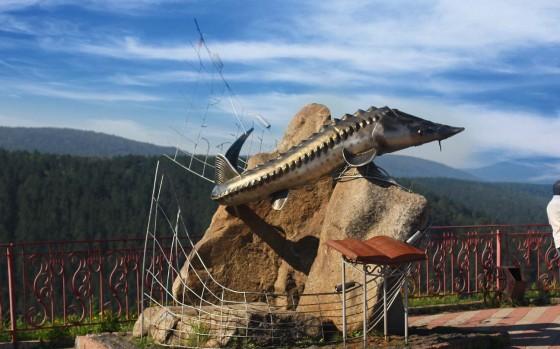 Памятник осетра
