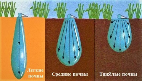 Движение воды в почве в зависимости от типов грунта
