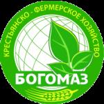 Логотип БОГОМАЗ