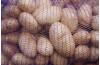 Овощная сетка 50*80