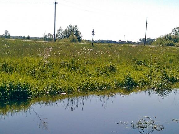 Ручей - источник воды для капельного полива