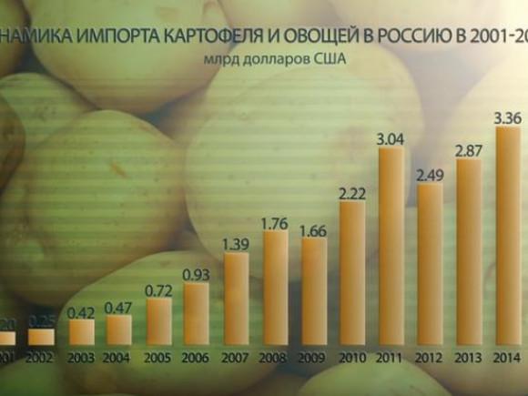 Рост цены импорта картофеля и овощей в России
